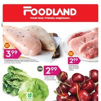 Foodland - Weekly - Summer's On! Flyer