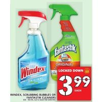 Windex, Scrubbing Bubbles Or Fantastik Cleaners